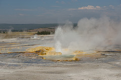Geyser at Fountain Paint Pots - Yellowstone National Park