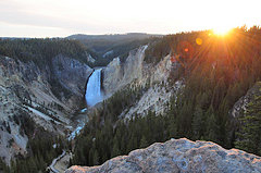 Lower Falls: Yellowstone National Park